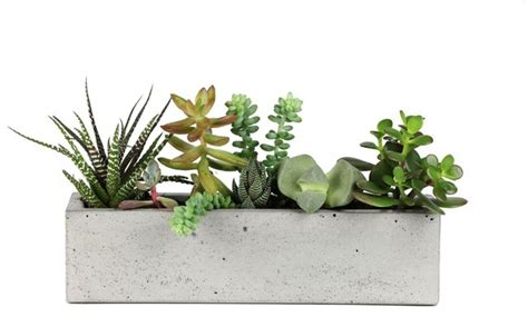 Window Sill Planter Indoor Concrete Windowsill Planter Modern Indoor Pots And