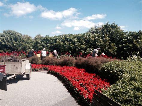 Manurewa Botanical Gardens Auckland Botanic Gardens Manurewa Localist