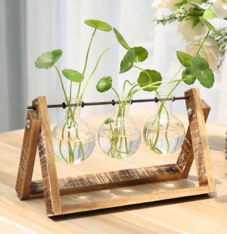 patio garden glass terrarium containers terrarium