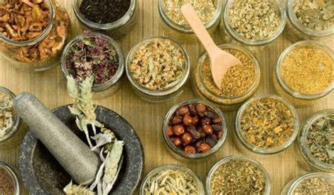 conoce mas acerca de la medicina tradicional mexicana elaesi