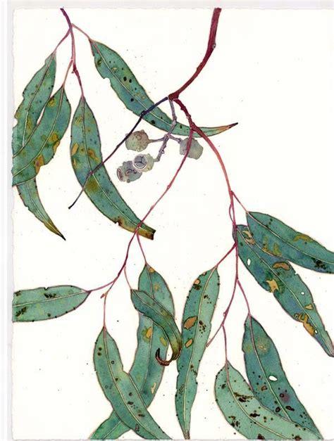 printable gum leaves gabby malpas gum leaves botanical pinterest