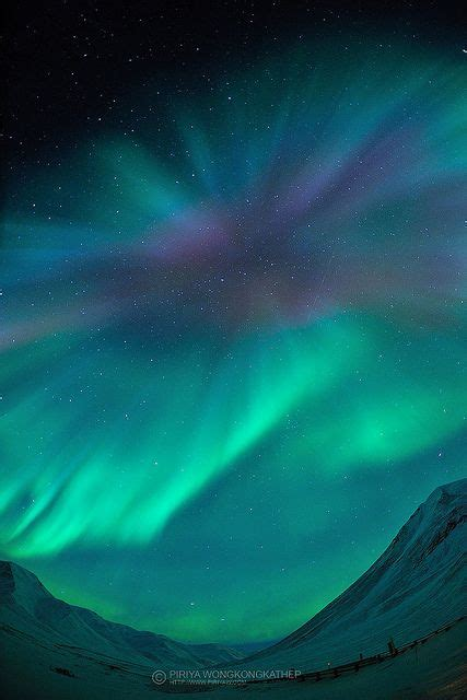 healy alaska northern lights 17 best images about howie my alaska state trooper on
