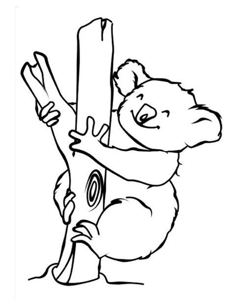 dibujos infantiles koala dibujos para colorear koalas