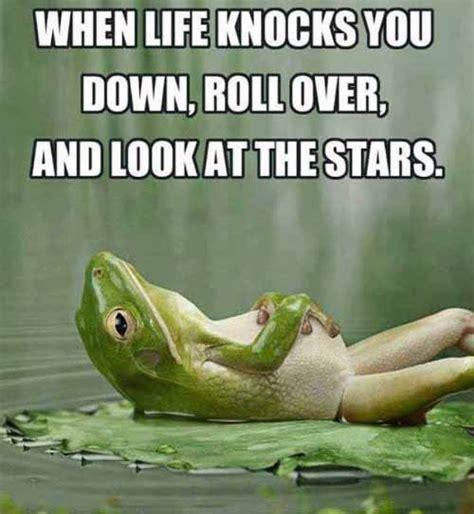 Life Memes - when life knocks you down