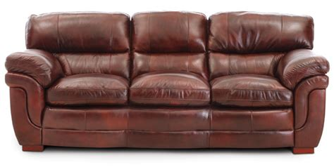dog friendly couches pet friendly leather sofa awesome pet friendly leather