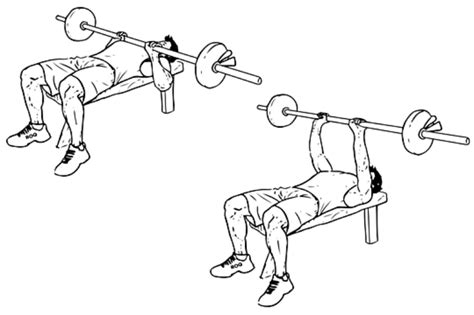 closed grip bench close grip bench press