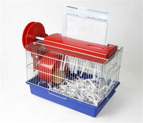 Pengganti Serbuk Kayu Untuk Kandang Hamster tips merawat hamster dropsis s