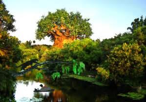 imagenes disney animal kingdom disney theme parks animated gifs gifmania