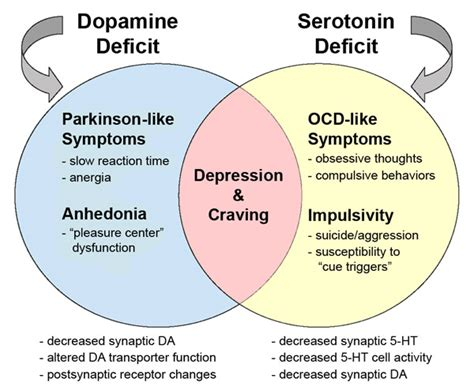 Antidepressant Detox Symptoms by Addiction Inbox What Do We When We Talk About Craving