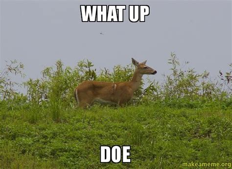 Doe Memes - doe memes 28 images forreal doe where dey at doe