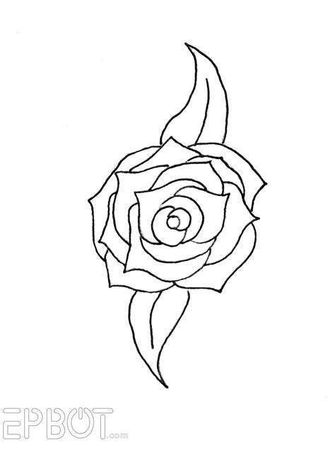 drawing pattern of rose rose pictures to trace impremedia net