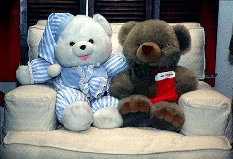 wallpaper couple bear cute teddy bear couple desicomments com