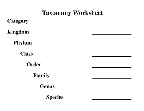 interpreting graphics taxonomy worksheet answers pictures taxonomy worksheet getadating