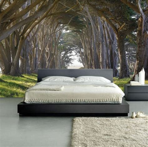 bedroom wall covering ideas wall mural sunrise in a forest wall paper self adhesive
