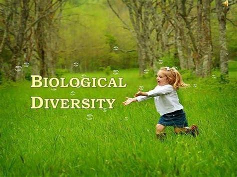 Biological Diversity Authorstream Biodiversity Ppt Template Free