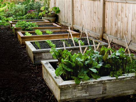 How To Build Raised Garden Bed Best Raised Garden Beds Building Raised Vegetable Garden