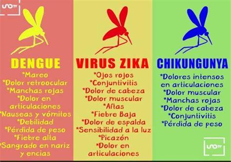 que es el virus sika golfcartbangkokcom 191 cu 225 les son los s 237 ntomas del zika dengue y chikungunya