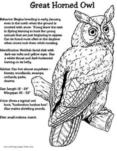 barred owl coloring page 42 worksheets on pinterest worksheets elements of art