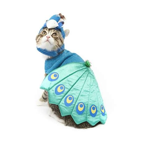 Peacock Home Decor Shop Peacock Cat Costume Meowingtons