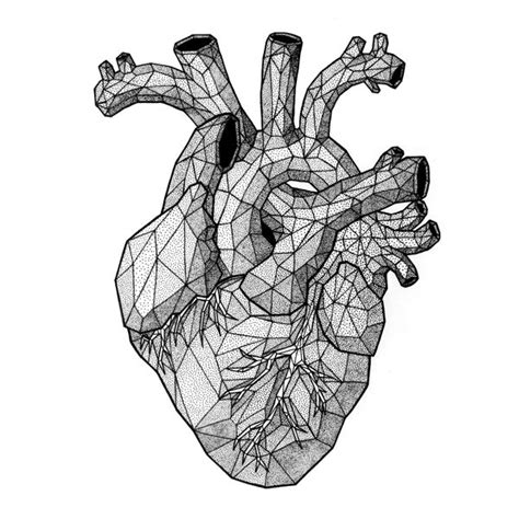 best 25 human heart ideas on pinterest human heart