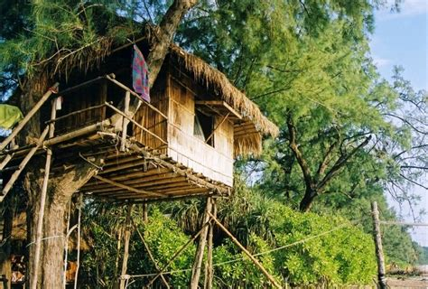 best tree houses 10 best tree houses in india holidaybirds