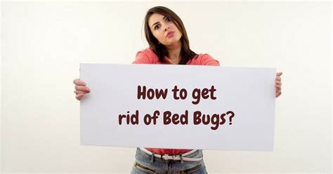 how do i get rid of a bench warrant what to use to get rid of bed bugs 28 images how to
