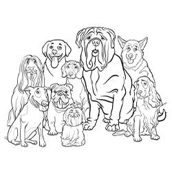 coloring pages dog breeds free coloring pages of dog breeds group of dogs the