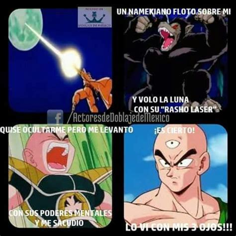 Memes De Dragon Ball Z En Espaã Ol - memes de dragon ball z 12 dragon ball espa 209 ol amino
