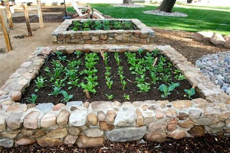 river rock garden bed raised beds lets grow