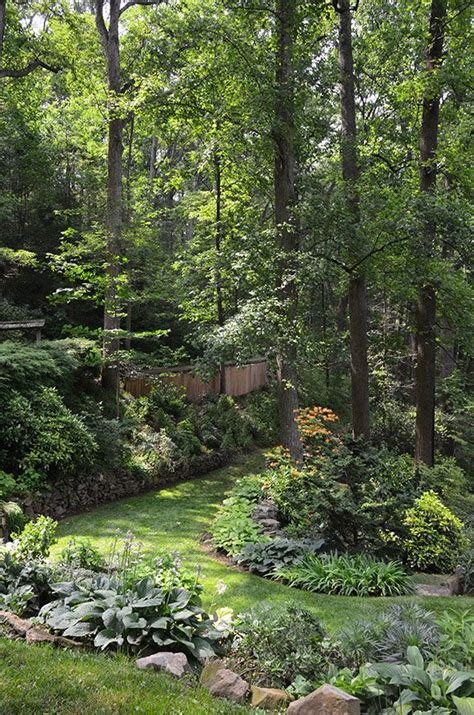 Best Backyard Gardens by 997 Best Shade Garden Plants Images On Plants