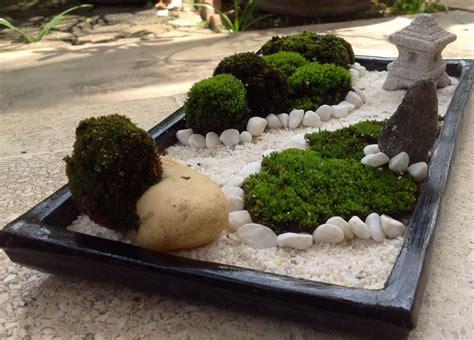mini zen rock garden moss on the white mini zen garden
