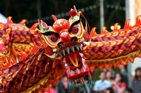 chinese new year traditions the complexities of life