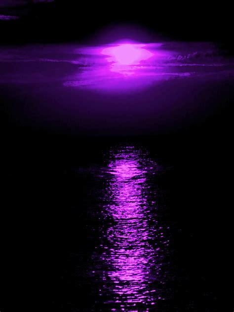 the color purple book review essay color purple essay the color purple book review essay