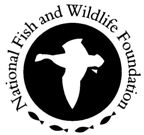 chesapeake bay stewardship fund dug network