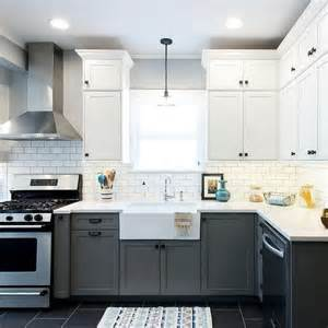 self assemble kitchen cabinets trend self assemble kitchen cabinets greenvirals style