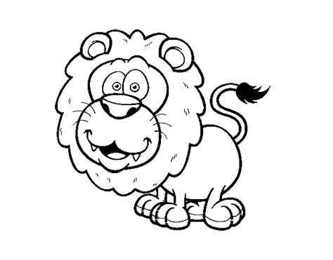 african lion coloring pages southwest african lion coloring page coloringcrew com