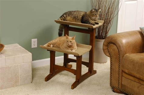 modern cat furniture cat condos cat trees towers gyms
