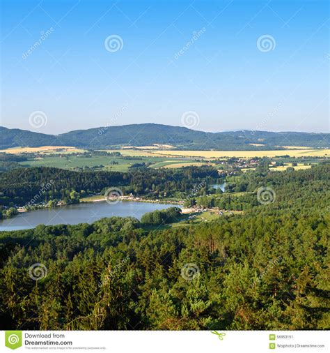 Clear Lake In The Forest Small Lake In The Forest Clear Sky Royalty Free