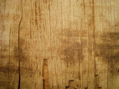 wood pattern inkscape inkscape tutorial carved wood effect youtube