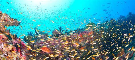 soggiorno alle maldive abu dhabi e soggiorno mare alle maldive originaltour