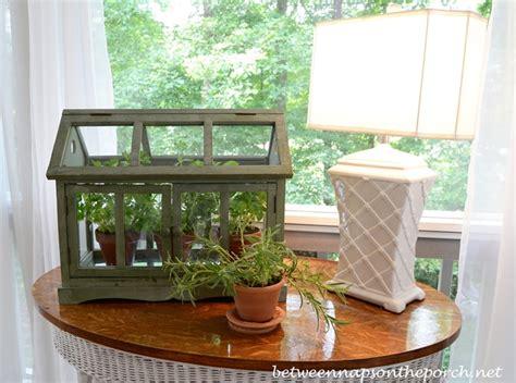 table top herb garden indoor tabletop terrarium greenhouse quotes