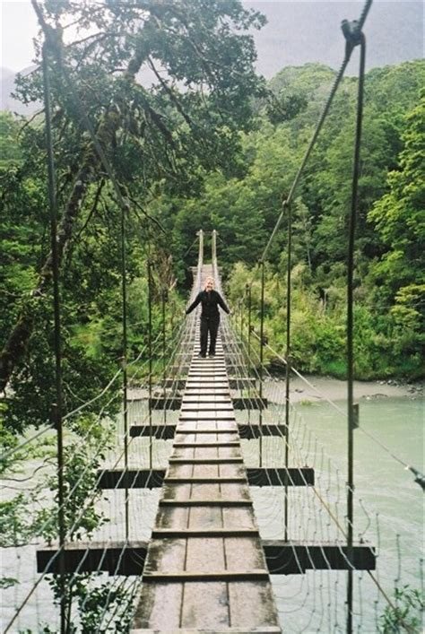 rope swing bridge 17 best images about rope bridges on pinterest