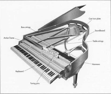 inside a piano diagram 12 best piano technology images on instruments