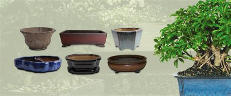 planting pots for sale 100 planting pots for sale interior of greenhouse
