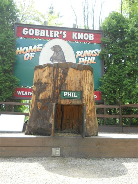 What Is A Knob Gobbler by Weather Capitol Of The World Punxsutawney Pa