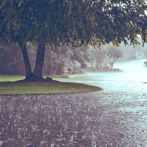 Air Turun manfaat dan doa ketika turun hujan dalam islam muslimarket