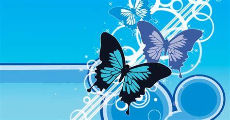 wallpaper kupu kupu tercantik  gambar keren  unik