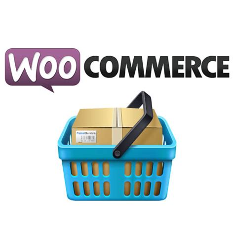 woocommerce template tutorial design woocommerce themes web designers guide best