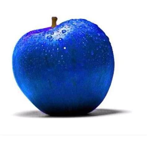 Blue Pumpkins Fruit Cutters And Pretty Stuff by Best 25 Royal Blue Colour Ideas On Royal Blue