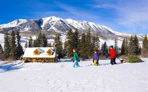 colorado mountain christmas tree the best trees in the united states travel leisure